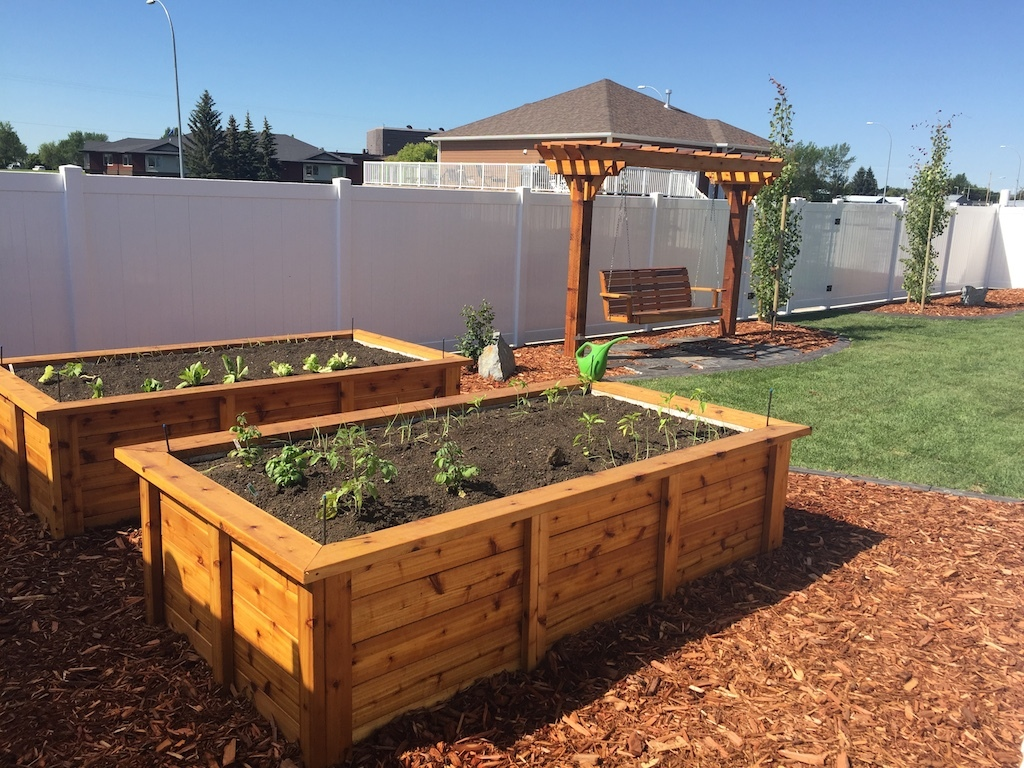 Raised Garden Boxes and Cedar Swing